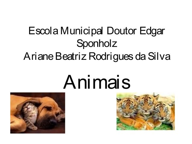 Escola Municipal Doutor Edgar  Sponholz  Ariane Beatriz Rodrigues da Silva  Animais