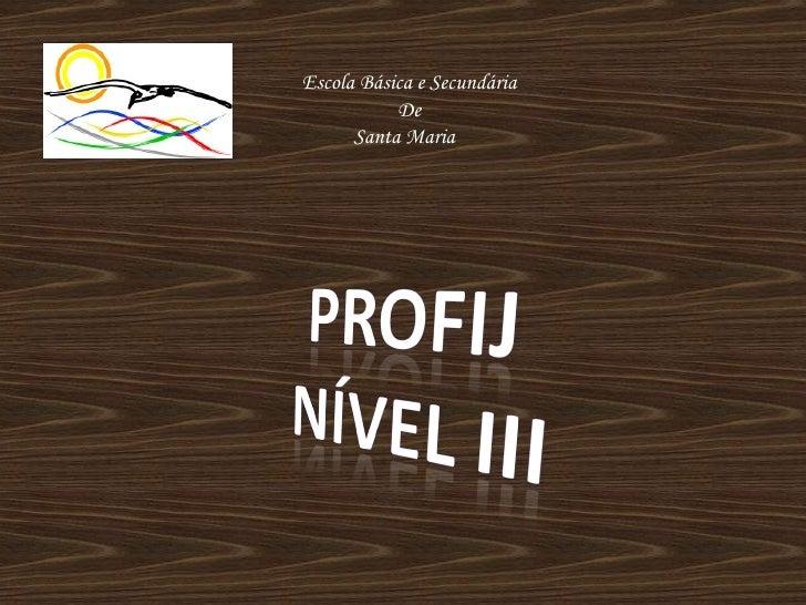 Profij III