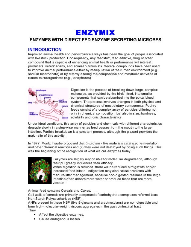 Profiles enzymix