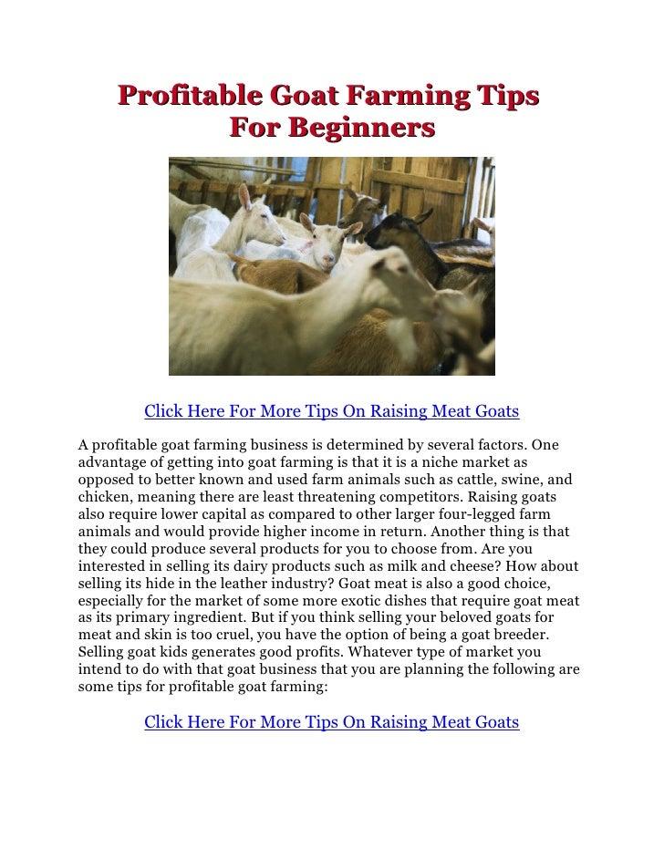 Profitable Goat Farming Business Plan In India