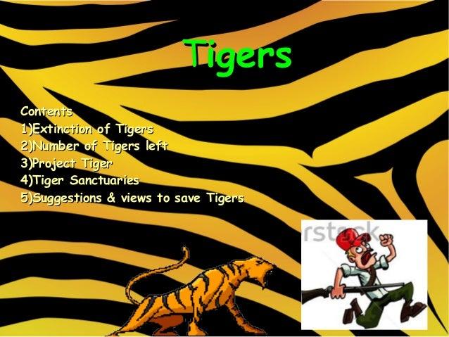 tigers                         TigersContents1)Extinction of Tigers2)Number of Tigers left3)Project Tiger4)Tiger Sanctuari...