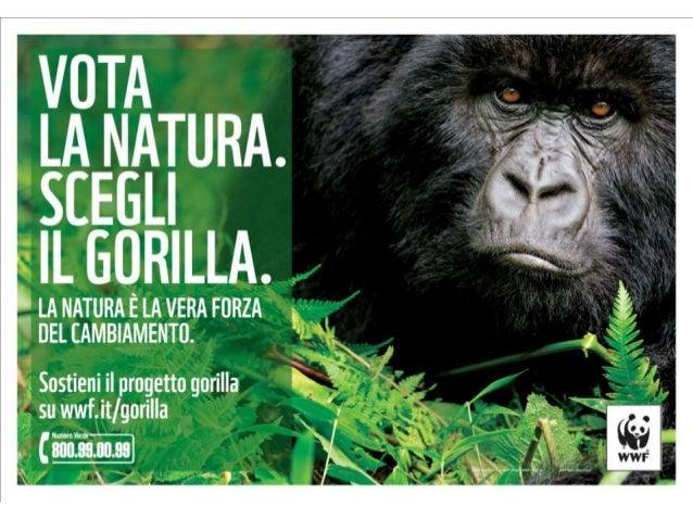 Progetto gorilla