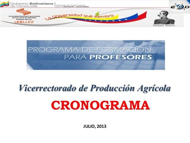 Vicerrectorado de Producción Agrícola JULIO, 2013 CRONOGRAMA