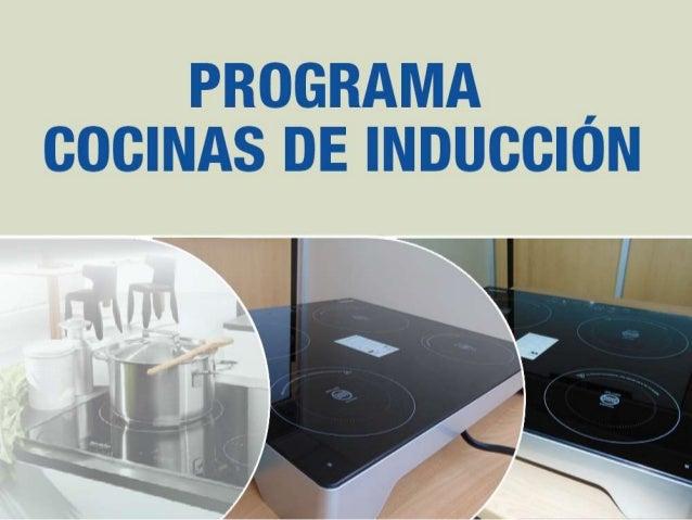 Programa cocinas de inducci n ecuador for Programa para planificar cocinas