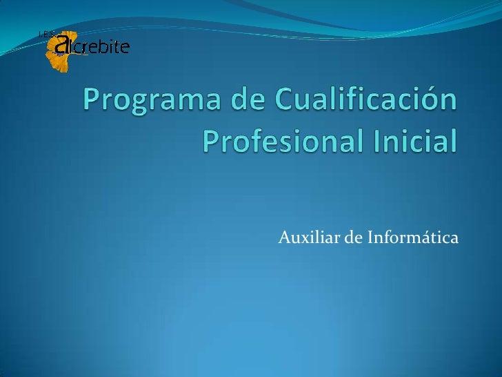 Programa de cualificación profesional inicial