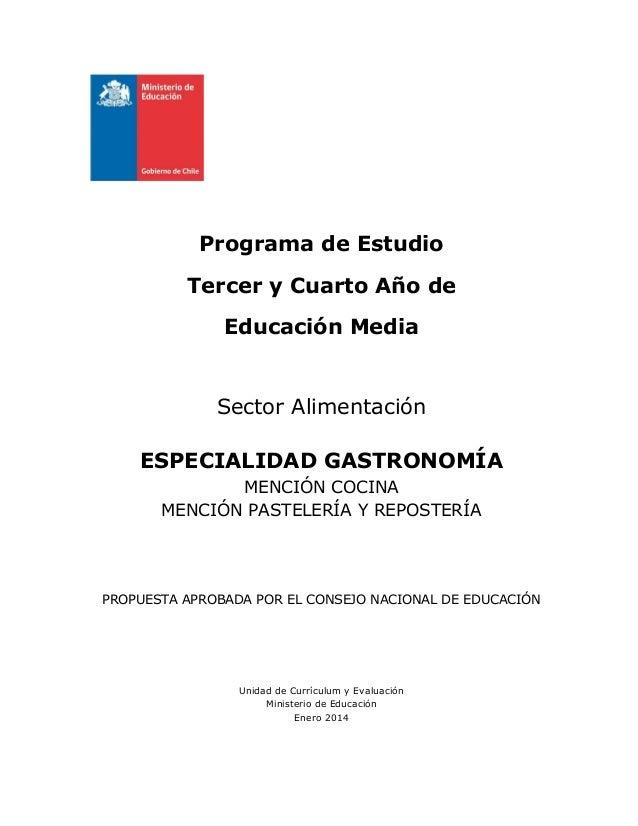 Programa de Estudio Tercer y Cuarto Año de Educación Media  Sector Alimentación ESPECIALIDAD GASTRONOMÍA MENCIÓN COCINA ME...