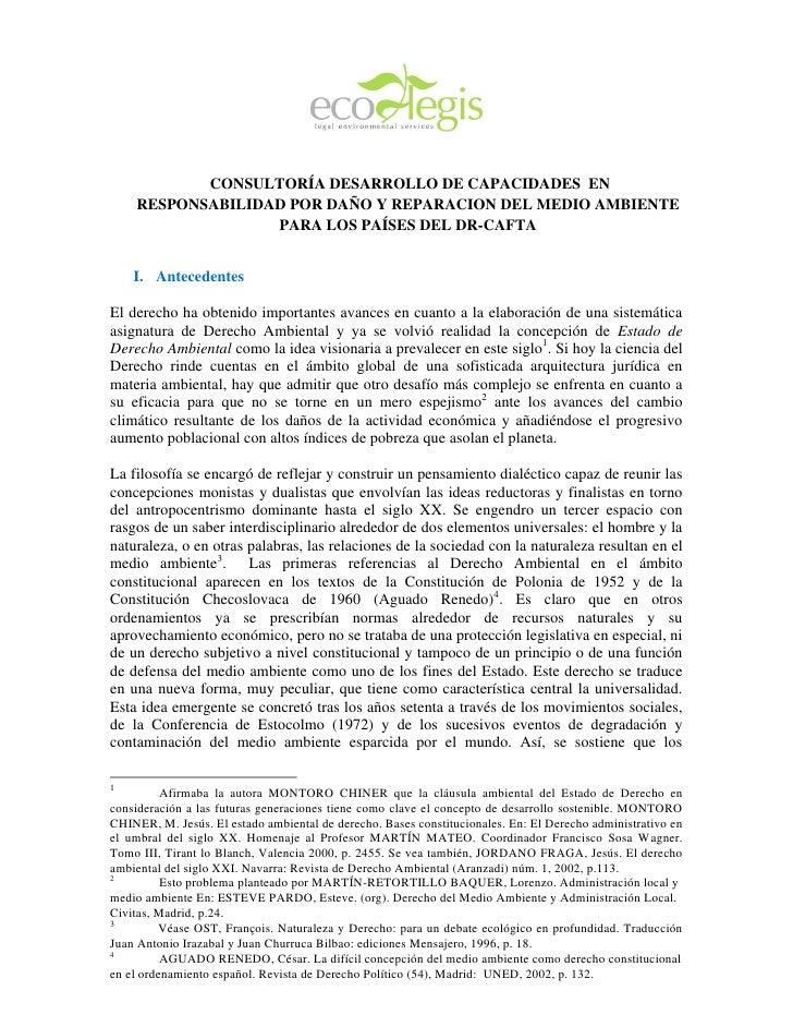 CONSULTORÍA DESARROLLO DE CAPACIDADES EN     RESPONSABILIDAD POR DAÑO Y REPARACION DEL MEDIO AMBIENTE                   PA...