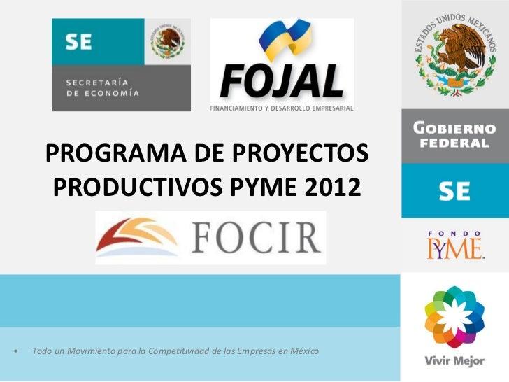 PROGRAMA DE PROYECTOS       PRODUCTIVOS PYME 2012•   Todo un Movimiento para la Competitividad de las Empresas en México