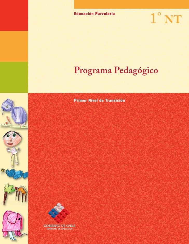 1° NTEducación ParvulariaPrograma PedagógicoPrimer Nivel de Transición