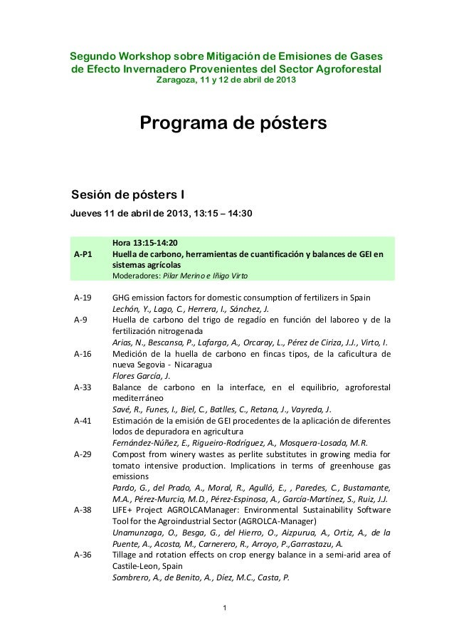 Programa posters remedia_2013