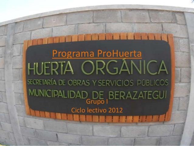 Programa ProHuertaGrupo ICiclo lectivo 2012