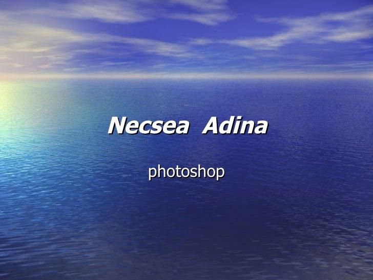 Necsea  Adina photoshop
