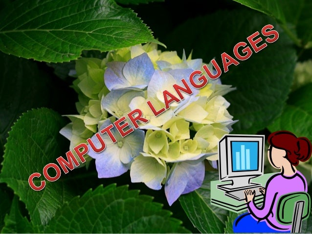 COMPUTER LANGUAGES • A computer languages are the languages by which a user command a computer to work on the algorithm wh...