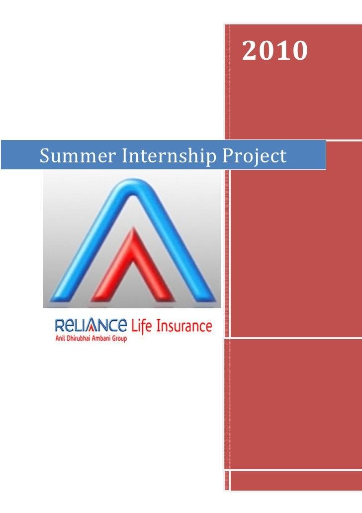 2010Summer Internship Project