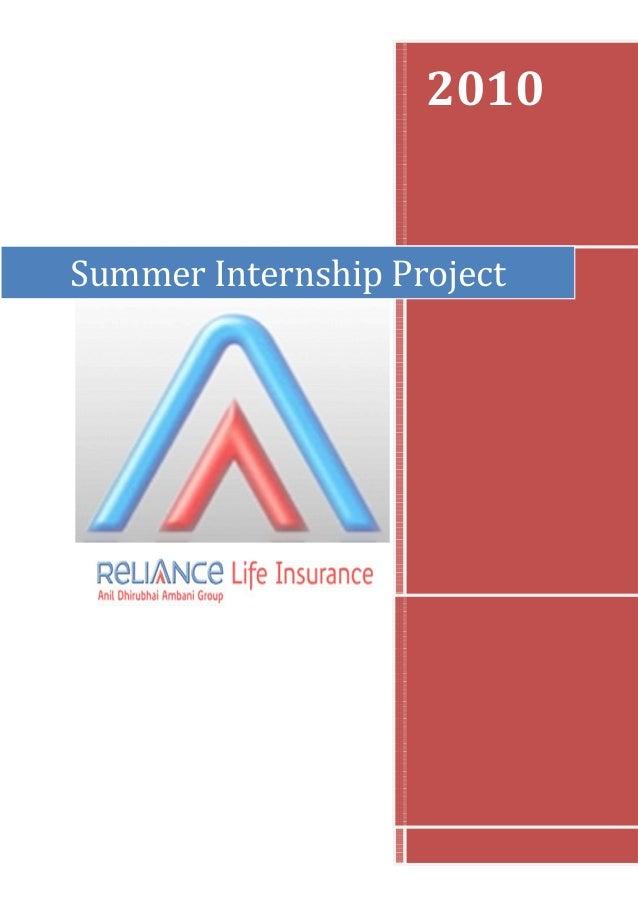 2010 Summer Internship Project