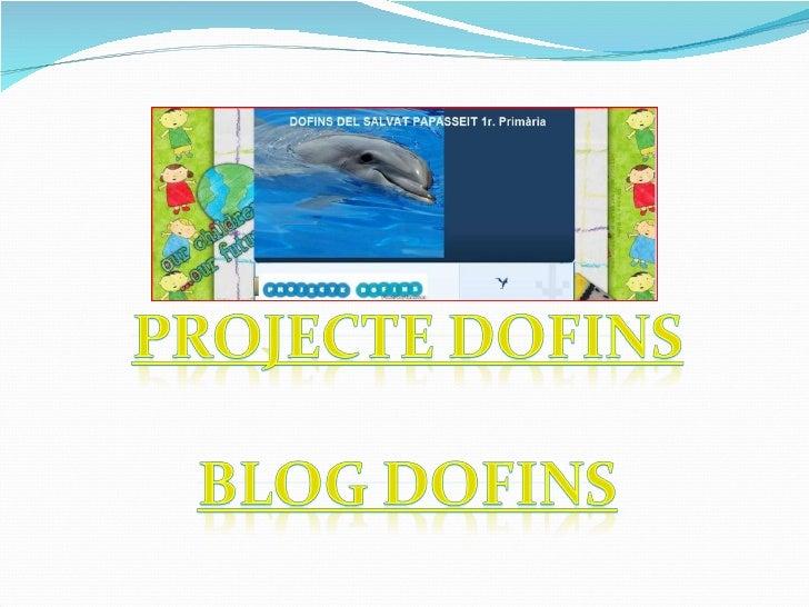 projecte dofins.ppt