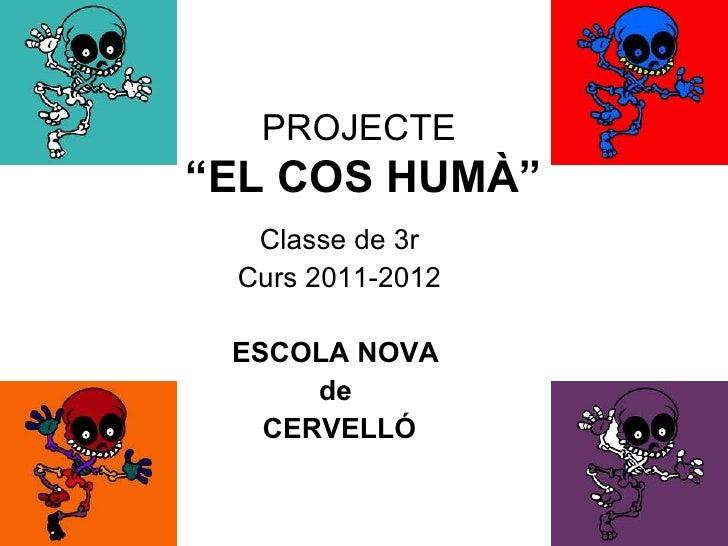 """PROJECTE""""EL COS HUMÀ""""  Classe de 3r Curs 2011-2012 ESCOLA NOVA      de   CERVELLÓ"""