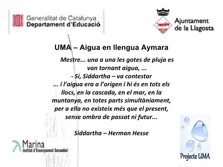 <ul><li>UMA – Aigua en llengua Aymara </li></ul><ul><ul><li>Mestre... una a una les gotes de pluja es van tornant aigua, ....