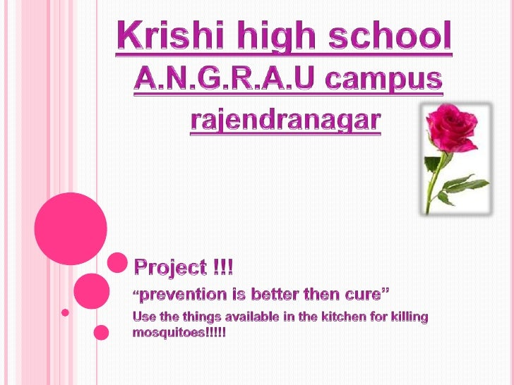 "Project !!!<br />""prevention is better then cure""<br />Use the things available in the kitchen for killing mosquitoes!!!!!..."