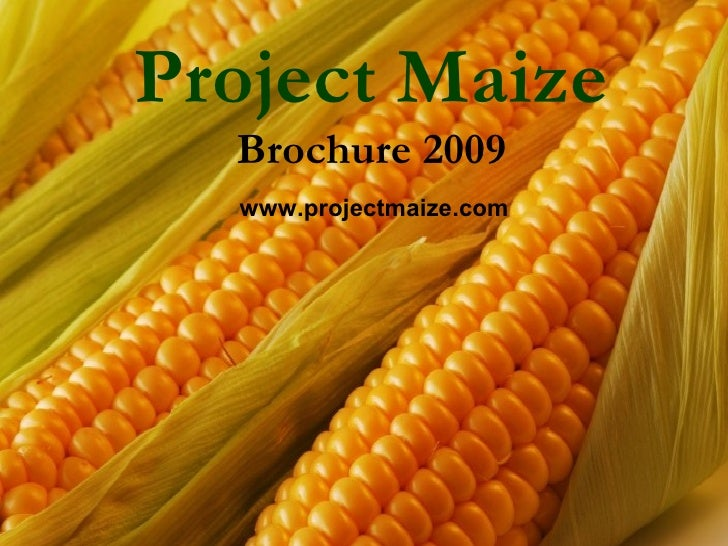 Project Maize   Brochure 2009   www.projectmaize.com