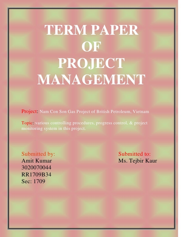 TERM PAPER              OF           PROJECT         MANAGEMENT Project: Nam Con Son Gas Project of British Petroleum, Vie...