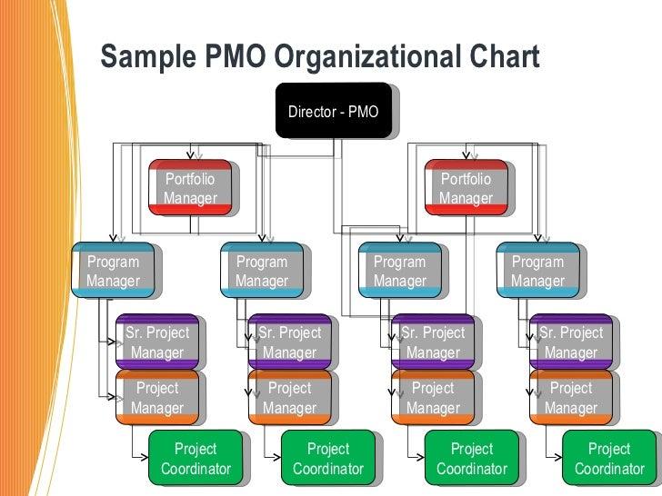 ... organizational chart director pmo program manager portfolio manager