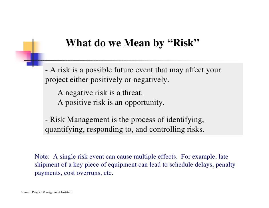 Project risk management literature review