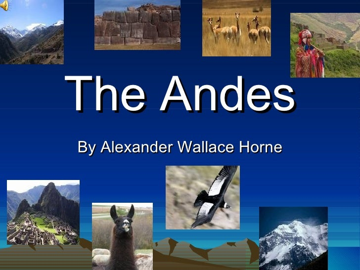 The Andes By Alexander Wallace Horne