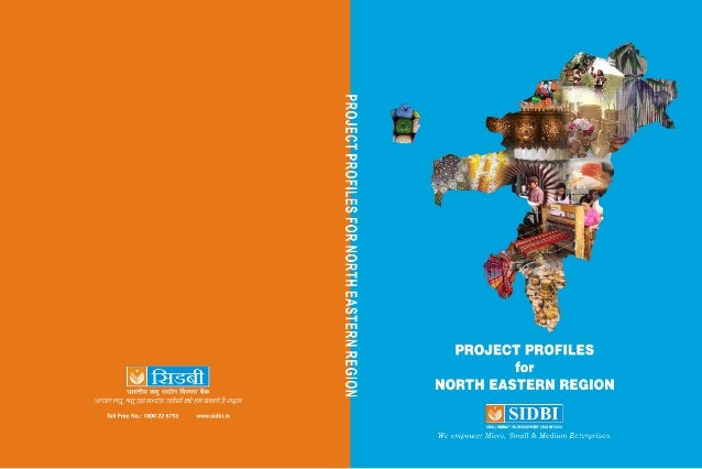 Project profile for ner