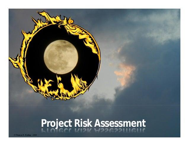 Project Risk Assessment© Thomas E. Festing – 2013                             1