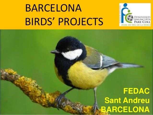 BARCELONABIRDS' PROJECTS                    FEDAC               Sant Andreu              BARCELONA