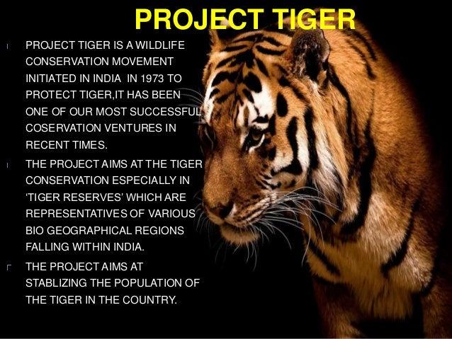 Tiger national animal essay