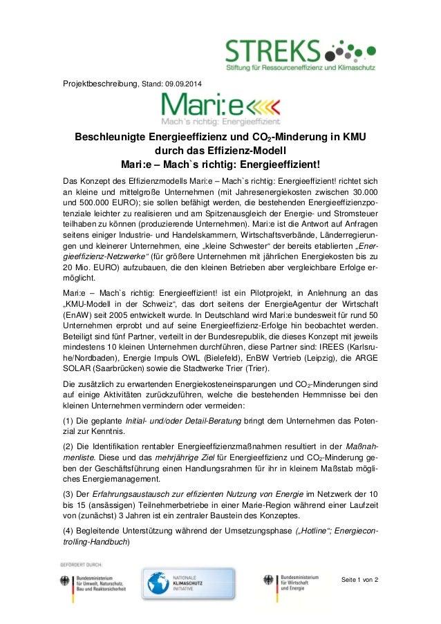 Seite 1 von 2  Projektbeschreibung, Stand: 09.09.2014  Beschleunigte Energieeffizienz und CO2-Minderung in KMU  durch das ...