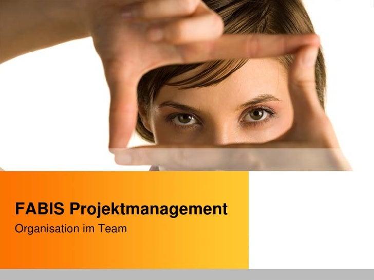 FABIS Projektmanagement Organisation im Team