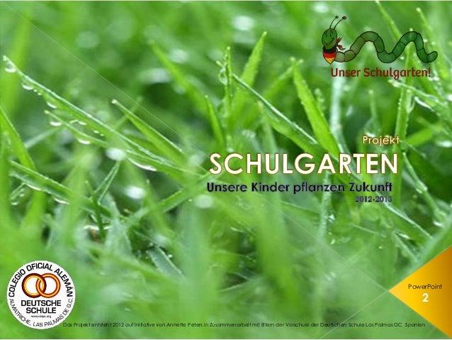 Projekt Schulgarten