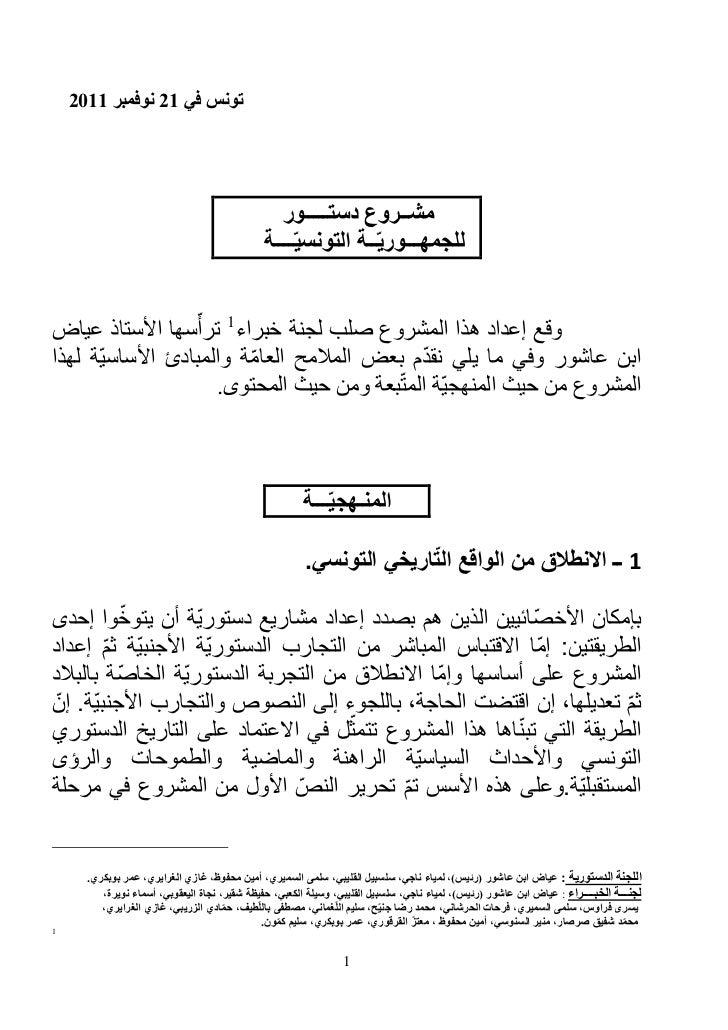 Yadh Ben Achour : Projet constitution