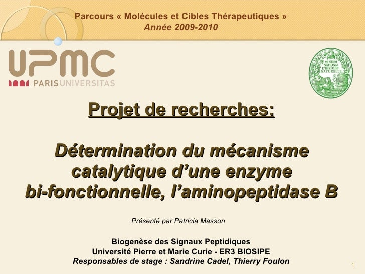 Projet de recherches: Détermination du mécanisme catalytique d'une enzyme bi-fonctionnelle, l'aminopeptidase B Biogenèse d...
