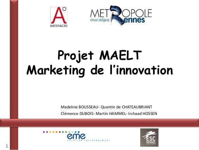 Projet MAELT    Marketing de l'innovation         Madeline BOUSSEAU- Quentin de CHATEAUBRIANT         Clémence DUBOIS- Mar...