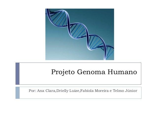 Projeto Genoma Humano Por: Ana Clara,Drielly Luize,Fabíola Moreira e Telmo Júnior