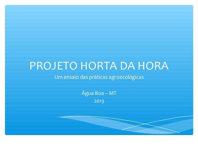 PROJETO HORTA DA HORA Um ensaio das práticas agroecológicas Água Boa – MT 2013