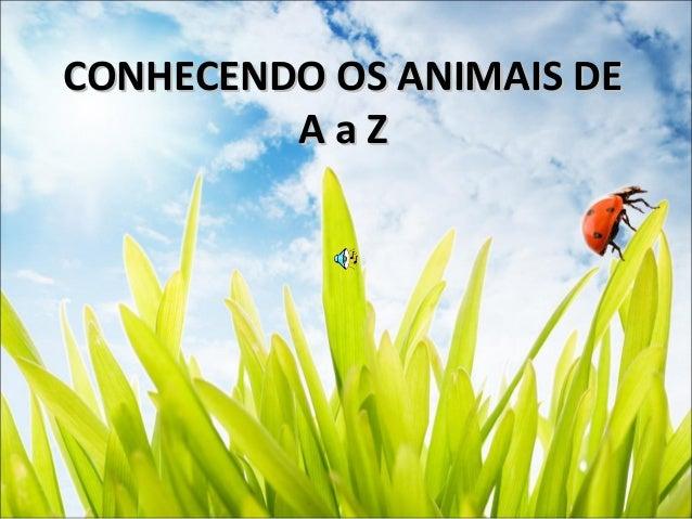 CONHECENDO OS ANIMAIS DECONHECENDO OS ANIMAIS DE A a ZA a Z