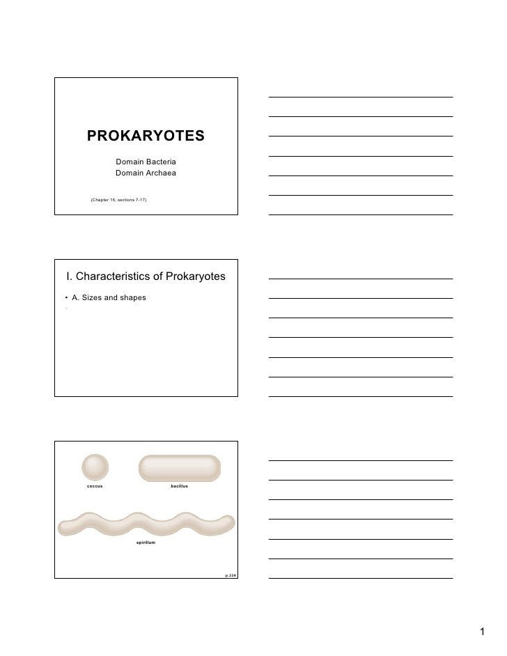 PROKARYOTES                   Domain Bacteria                   Domain Archaea         (Chapter 16, sections 7-17)     I. ...