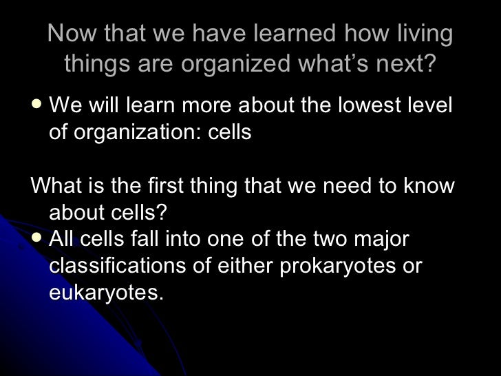 Now that we have learned how living things are organized what's next? <ul><li>We will learn more about the lowest level of...