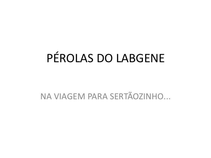 PÉROLAS DO LABGENE<br />NA VIAGEM PARA SERTÃOZINHO...<br />