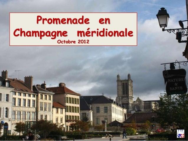 Promenade en Champagne méridionale Octobre 2012