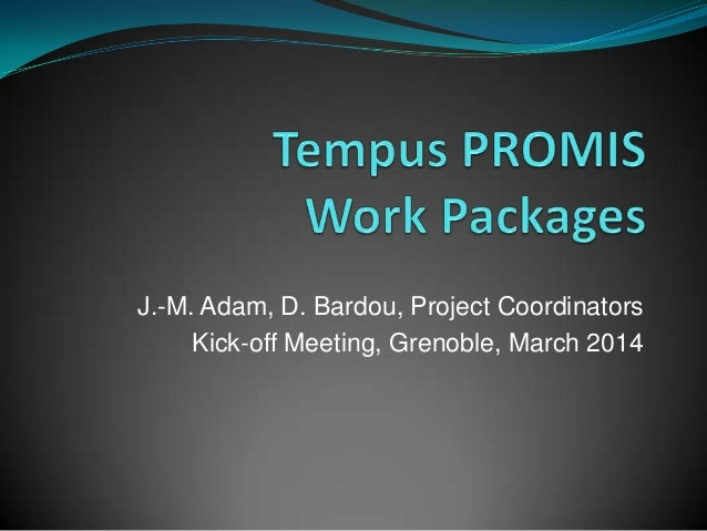 Tempus PROMIS Work Packages