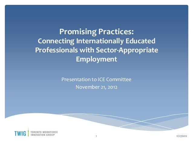 Promising Practices: Connecting Internationally EducatedProfessionals with Sector-Appropriate            Employment       ...