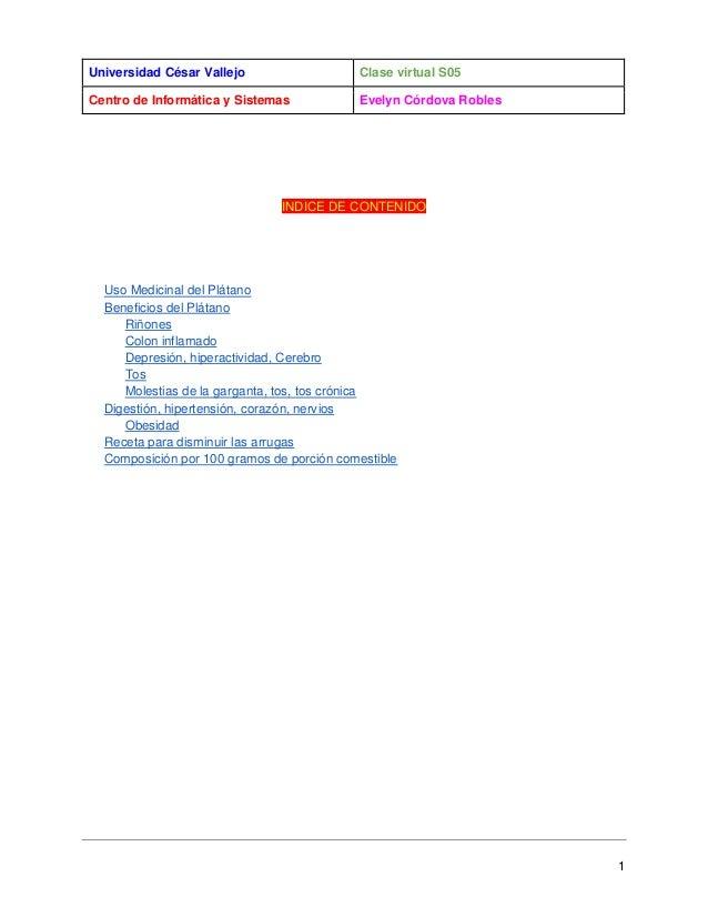 Universidad César Vallejo  Clase virtual S05  Centro de Informática y Sistemas  Evelyn Córdova Robles  INDICE DE CONTENIDO...