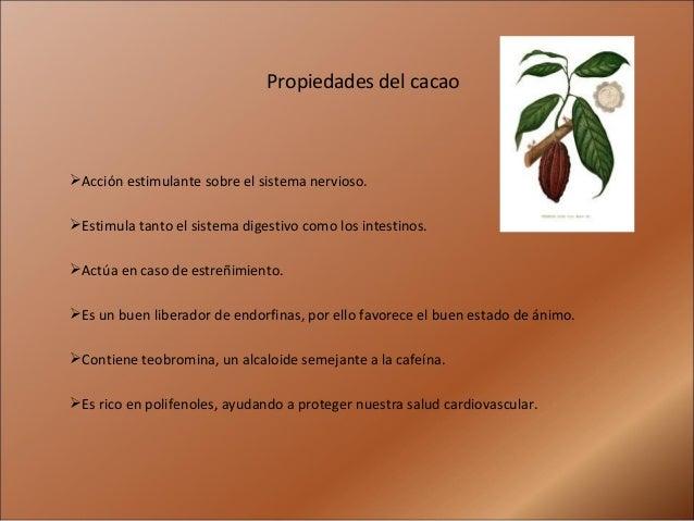 Propiedades del cacaoAcción estimulante sobre el sistema nervioso.Estimula tanto el sistema digestivo como los intestino...