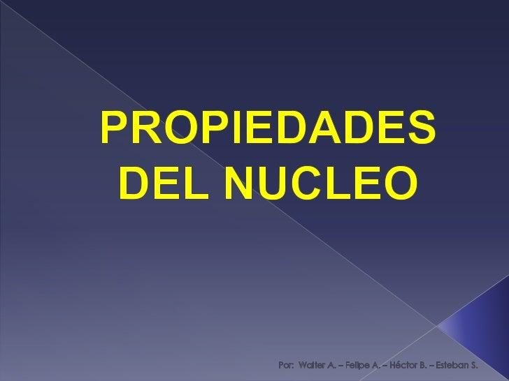 PROPIEDADES DEL NUCLEO<br />Por:  Walter A. – Felipe A. – Héctor B. – Esteban S.<br />
